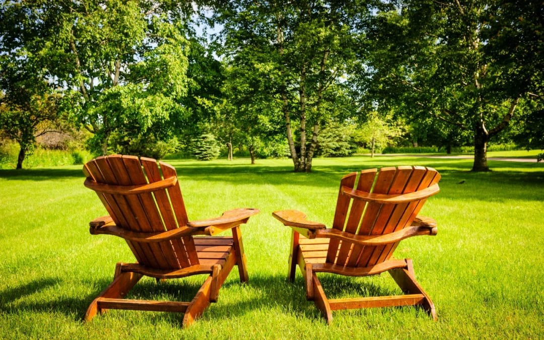 How to Maintain a Healthy Lawn this Summer